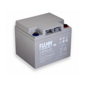 Batteria FIAMM AGM pannelli solari fotovoltaici 42Ah [12FGL42]