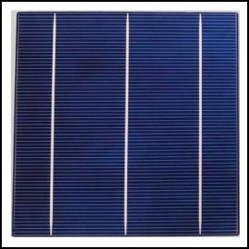 "Celula solar Policristalina 6""x6"" ( 156x156 mm ) A-Grade 3BB (Bus bar)"